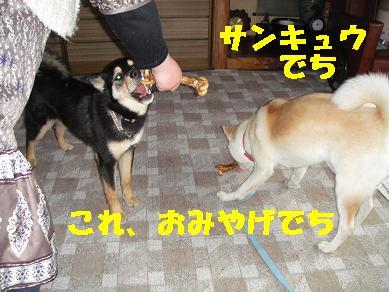 c0211642_10185793.jpg