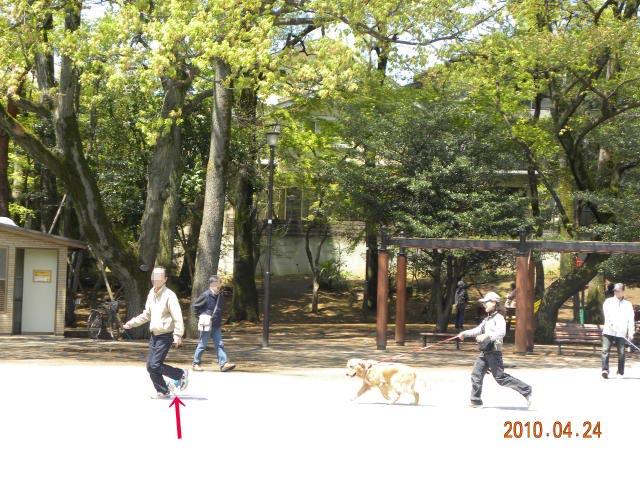 c0102545_1715450.jpg