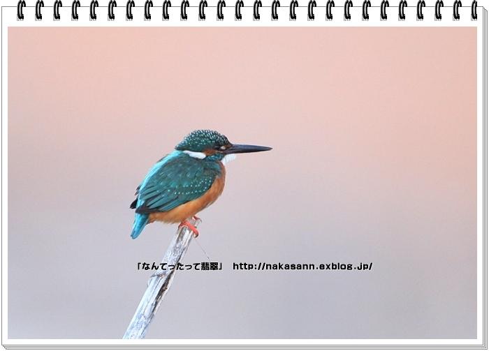c0128399_17473739.jpg