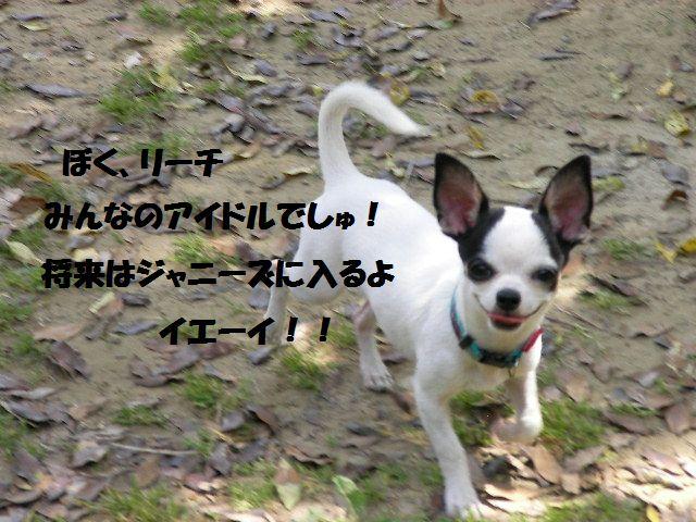 c0214384_20465943.jpg