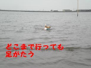 c0188294_15211958.jpg