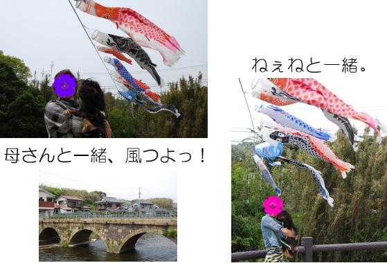 a0101958_1650171.jpg