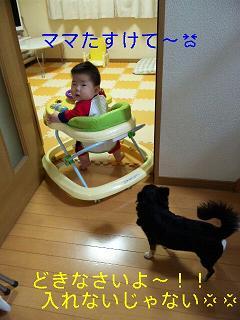 c0121141_21503841.jpg