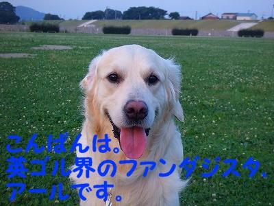 a0104162_1945184.jpg