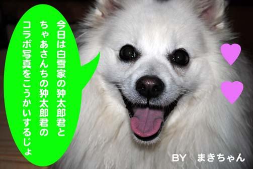 c0105157_21101941.jpg