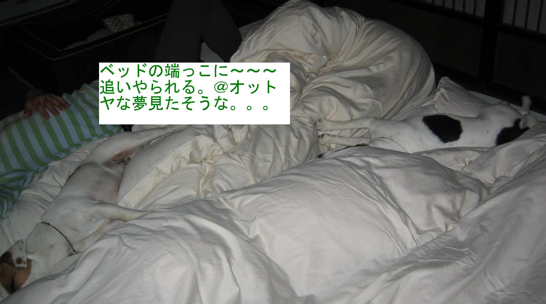 c0140260_21101313.jpg