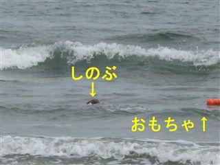 e0121589_19222990.jpg