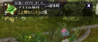 e0077911_910116.jpg