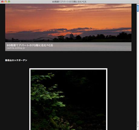 e0051018_14151580.jpg
