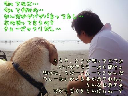 c0218443_1771654.jpg
