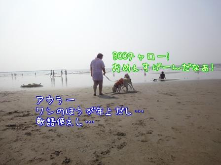 c0218443_17855.jpg