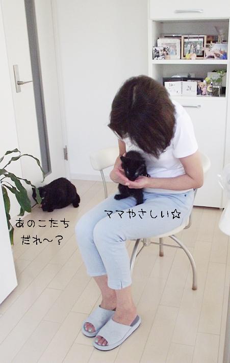 c0223478_1450157.jpg