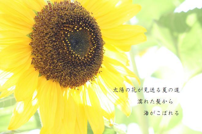 c0132335_22111290.jpg