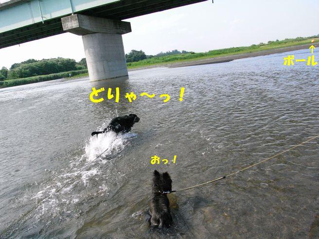 c0039114_1531526.jpg