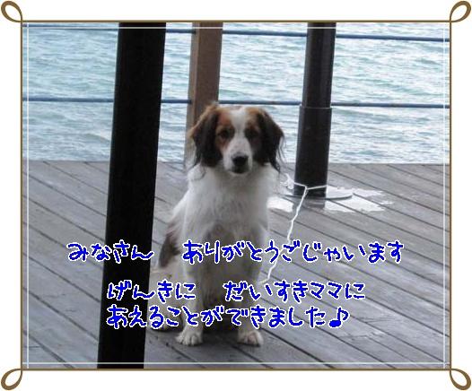 c0075585_8423065.jpg
