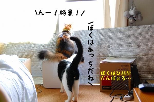 c0181639_0504170.jpg