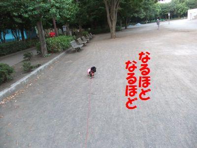 c0151866_20123331.jpg