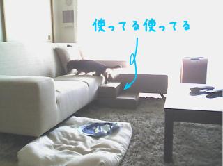 a0126209_1351672.jpg
