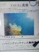 c0034029_0103728.jpg