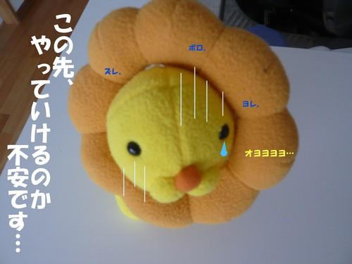 c0177261_2149451.jpg