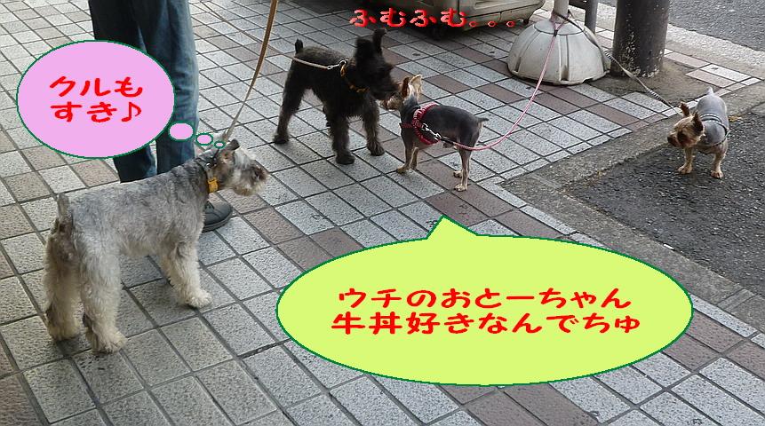 c0138198_14142116.jpg