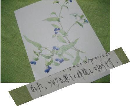 a0105023_17393526.jpg