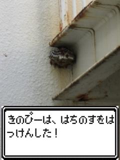 a0033733_14402832.jpg