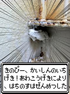 a0033733_14405646.jpg