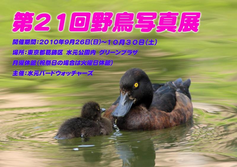 c0096278_21442432.jpg