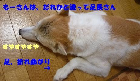 a0154801_20413023.jpg