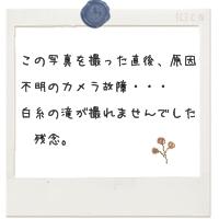 c0203128_2273811.jpg