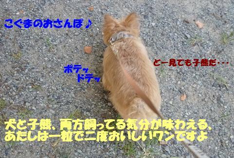 a0154801_10273779.jpg
