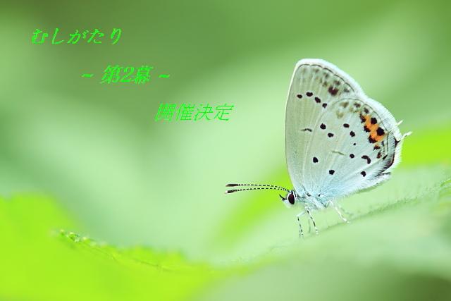 c0195662_2340954.jpg