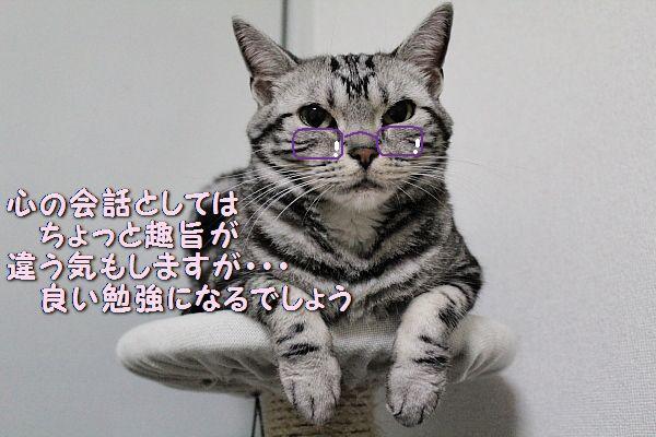 c0211109_244681.jpg