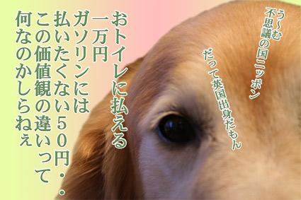 e0072606_20123515.jpg