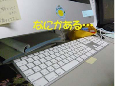 e0053491_113545.jpg