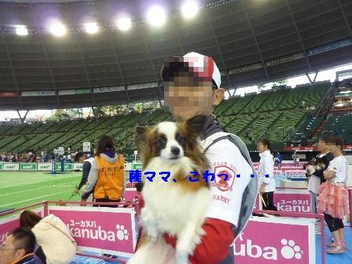 c0050220_1681830.jpg