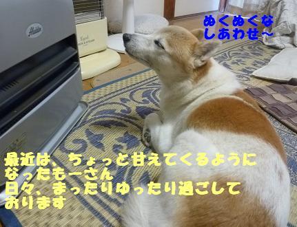 a0154801_20425349.jpg