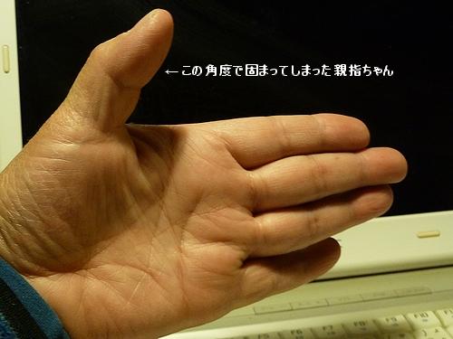 c0127703_0483232.jpg