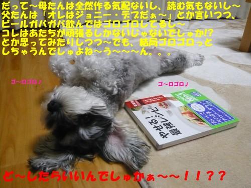 c0177261_18203582.jpg