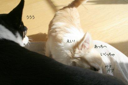 c0201883_10481961.jpg