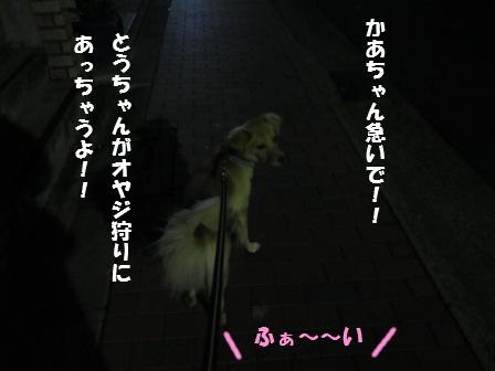 c0196992_024081.jpg
