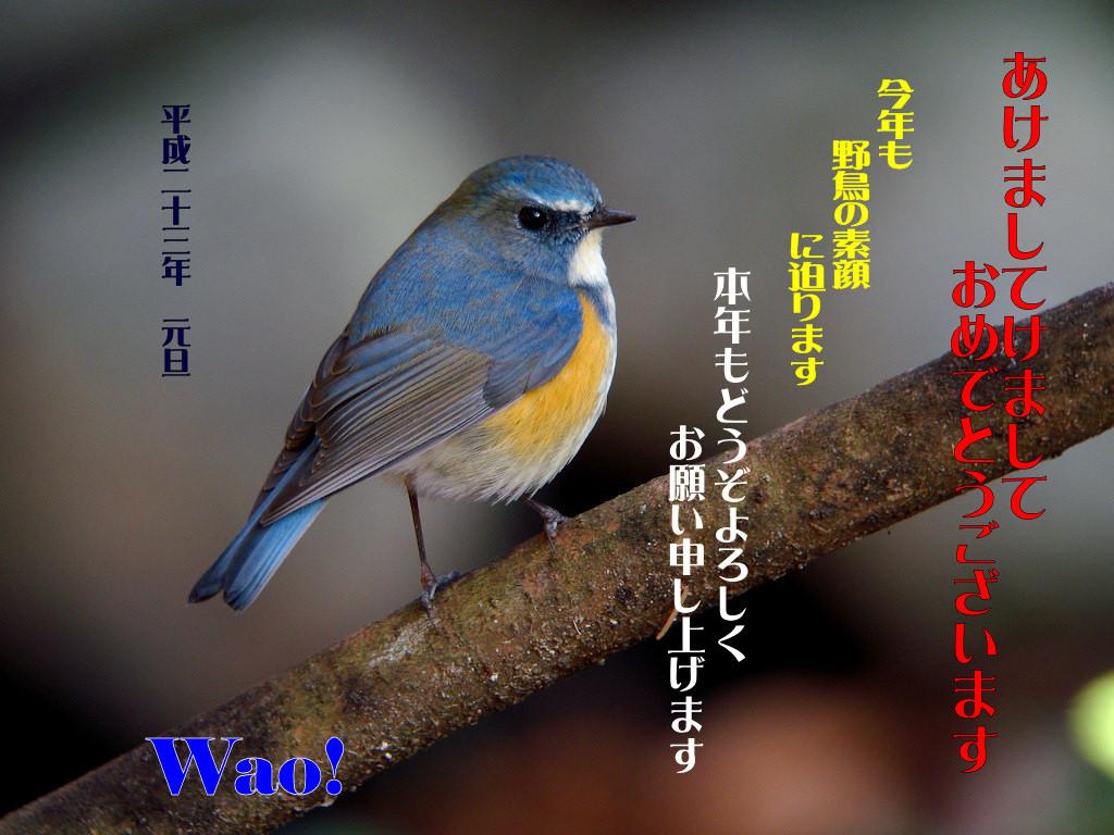 c0198669_0275830.jpg