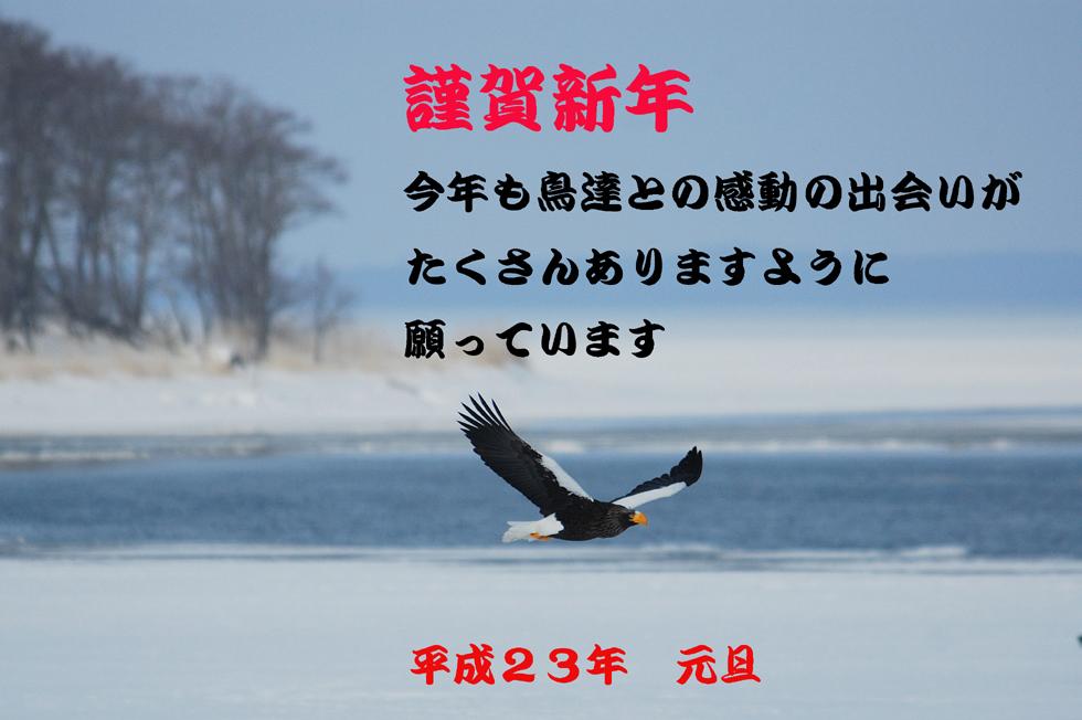 c0036878_111250.jpg