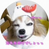e0059267_15213715.jpg