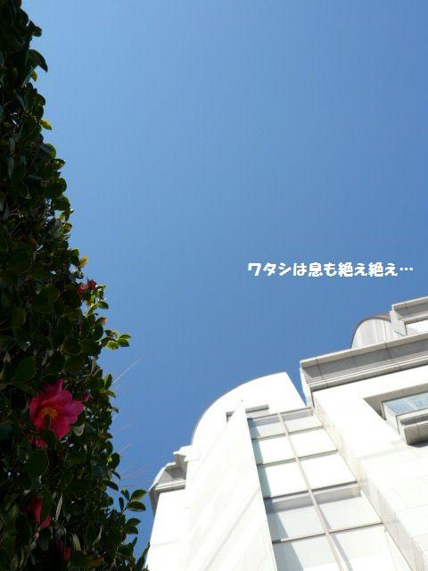 e0094407_1420361.jpg