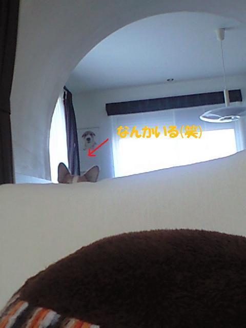 c0210375_10535451.jpg