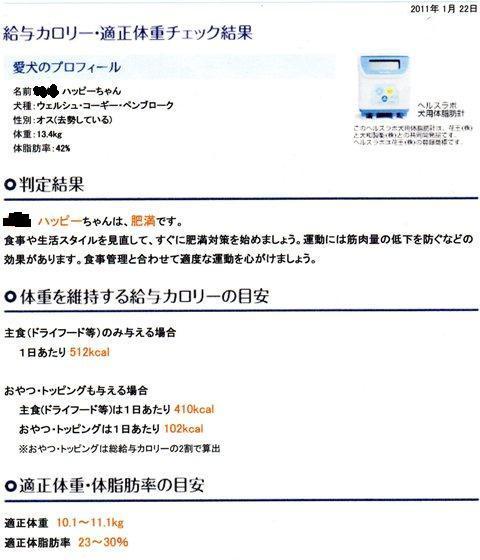 c0160878_19115873.jpg
