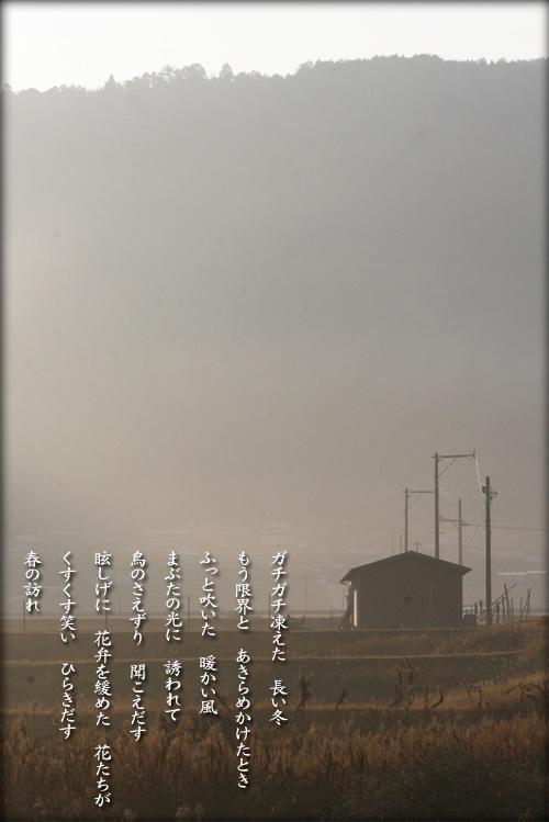 a0197968_20112285.jpg