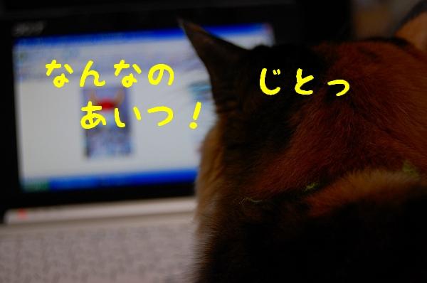 c0181639_093923.jpg